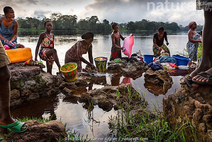 Local women washing clothes in river,  Oshwe, Democratic Republic of the Congo.  ,  Cleaning,Washing,People,Woman,Africa,Central Africa,Democratic Republic of the Congo,Flowing Water,River,Freshwater,Water,Local people,DRC,  ,  Karine Aigner