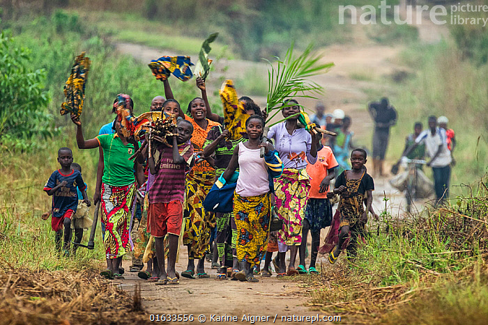 Women and children walking along road carrying fire wood and waving, Democratic Republic of Congo. May 2017.  ,  People,Woman,Happiness,Africa,Central Africa,Democratic Republic of the Congo,DRC,,,catalogue14  ,  Karine Aigner