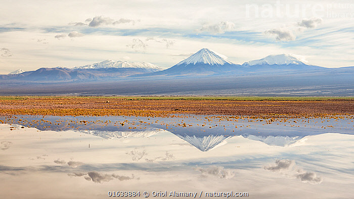 Licancabur volcano and surrounding mountains reflected in waters of a severe flood caused by climate change. Los Flamencos National Reserve, Antofagasta , Chile. February 2019., outdoors,latin america,desert,Atacama,Chile,South America,America,Antofagasta region,,,Snowcapped,Latin America,South America,Chile,Bolivia,Mountain,Volcano,Desert,Atacama Desert,Reflection,Flood,Landscape,Environment,Environmental Issues,Global Warming,Greenhouse Effect,Nature,Nature Reserve,Geology,Volcanic features,Climate change,Stratovolcano,Antofagasta Region,Antofagasta,Los Flamencos National Reserve,, Oriol  Alamany