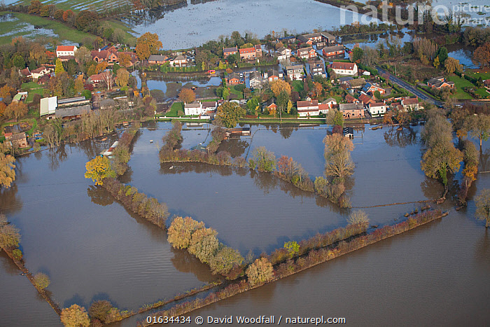 Aerial view of River Don showing flooded areas, Fishlake, South Yorkshire, UK. November 2019., Europe,Western Europe,UK,Great Britain,England,South Yorkshire,Aerial View,High Angle View,Settlement,Village,Agricultural Land,Cultivated Land,Flood,Flowing Water,River,Environment,Environmental Issues,Global Warming,Greenhouse Effect,Freshwater,Water,Farmland,Yorkshire,Climate change,Elevated view,, David  Woodfall