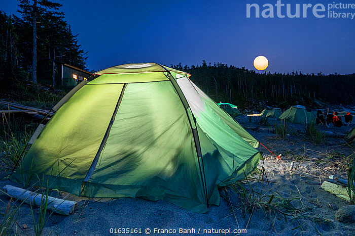 Camp on beach at full moon, in Vrangel Bay where Bowhead whale (Balaena mysticetus) congregate during summer. Primorsky Krai, Russia. August 2019., Dark,Russia,Artifical light,Tent,Moon,Full Moon,Night,Russian Far East,Comfortable,Cosy,Primorsky Krai,Far East Federal District,North Asia,Asian Russia,, Franco  Banfi
