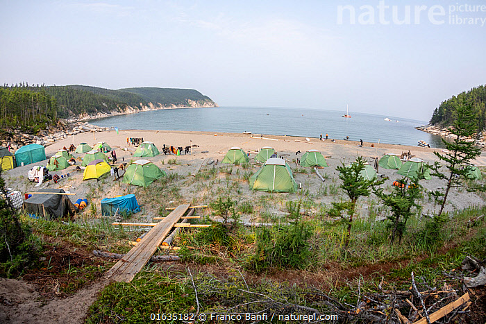 Camp with tents on beach in Vrangel Bay where Bowhead whale (Balaena mysticetus) congregate every summer. Primorsky Krai, Russia. August 2019.  ,  Group,Group Of People,Russia,Tent,Ocean,Pacific Ocean,Sea Of Okhotsk,Landscape,Coast,Marine,Coastal,Water,Saltwater,Sea,Russian Far East,Wildlife watching,Whale watching,Primorsky Krai,Far East Federal District,North Asia,Asian Russia,  ,  Franco  Banfi