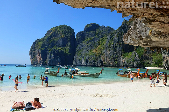 Tourists and boats at Maya Beach, limestone rock cliffs in background. Koh Phi Phi Leh, Krabi Province, Thailand. 2015.  ,  People,Tourist,Tourists,Group,Group Of People,Boat,Tropical,Cliff,Rock,Sands,Ocean,Indian Ocean,Andaman Sea,Landscape,Travel,Tourism,Coast,Marine,Coastal,Water,Saltwater,  ,  Nigel Cattlin