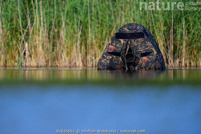 Floating hide with camera lens visible, for photography in the Nemunas Delta Nature Reserve, Lithuania.  ,  Capturing An Image,Photographing,People,Photographer,Photographers,Europe,Eastern Europe,East Europe,Baltic Countries,Lithuania,Photography,Wetland,Reserve,Protected area,  ,  Staffan Widstrand