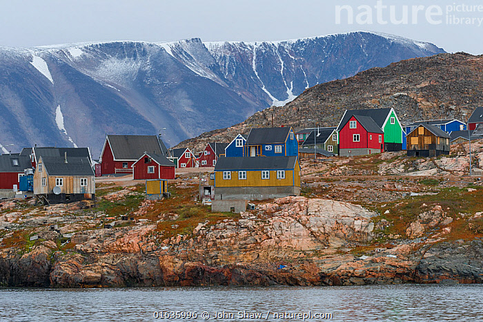 Brightly painted houses of Ittoqqortoormlit village, Scoresby Sund, East Greenland, August, 2019.  ,  August,Ocean,Arctic Ocean,Coast,Marine,Coastal,Water,Saltwater,Greenland Sea,Scoresby Sund,  ,  John Shaw