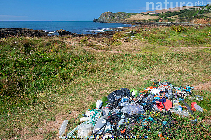 Plastic and other rubbish collected from beach clean-up. Prawle, South Devon, UK. July.  ,  Waste,Europe,Western Europe,UK,Great Britain,England,Devon,Man Made Material,Plastic,Plastics,Environment,Environmental Issues,Environmental Damage,Littering,Marine Pollution,  ,  Adrian Davies