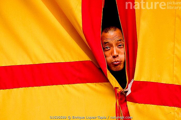 Monk peering through curtains, making a face, Hemis Buddhist Monastery, 3670 meters of altitude, Ladakh, India. September 2011.  ,  People,Man,Religious Role,Monk,Monks,Facial Expression,Making A Face,Asia,Indian Subcontinent,India,Portrait,Ladakh,Funny Face,  ,  Enrique Lopez-Tapia