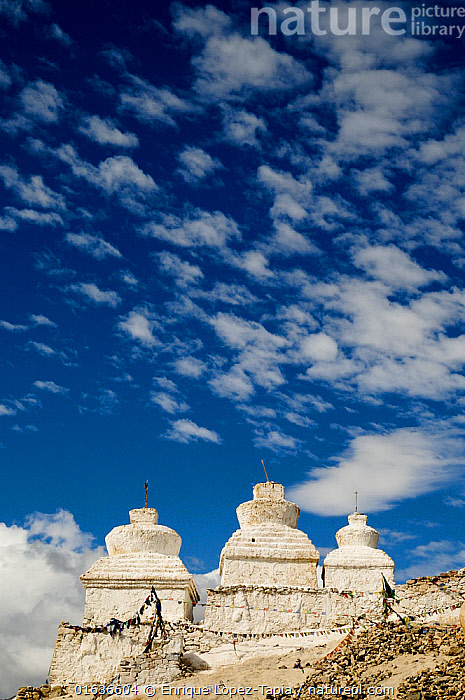 Chortens / Stupa in the Shey Valley, Indus Valley, Ladakh, India. September 2011.  ,  Asia,Indian Subcontinent,India,Building,Dome,Domed,Domes,Stupa,Stupas,Sky,Cloud,Religion,Eastern Religion,Eastern Religions,Buddhism,Blue sky,Ladakh,Buddhist,  ,  Enrique Lopez-Tapia