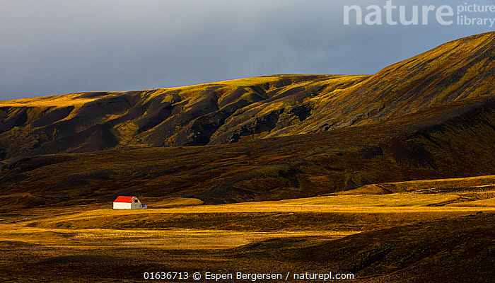Remote farmhouse, Southern Iceland. October 2017, Europe,Northern Europe,North Europe,Nordic Countries,Scandinavia,Iceland,Building,Residential Structure,House,Houses,Farmhouse,Farmhouses,Mountain,Landscape,, Espen Bergersen