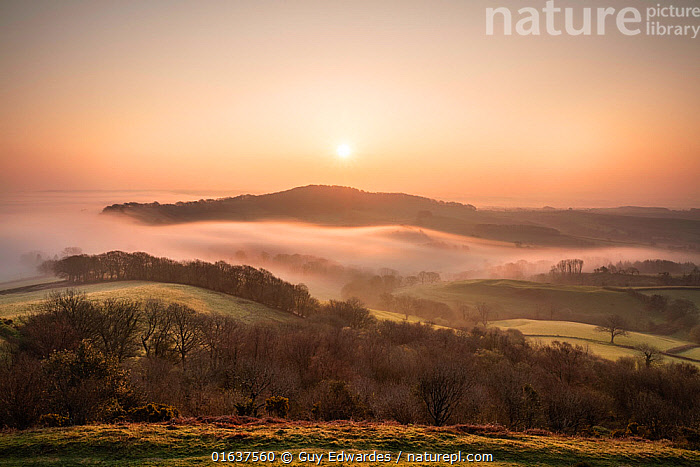 Sunrise over Lewesdon Hill and the Marshwood Vale, Dorset, England, UK, March 2019.  ,  Europe,Western Europe,UK,Great Britain,England,Dorset,Horizontal,Agricultural Land,Cultivated Land,Hill,Weather,Mist,Sunrise,Landscape,Countryside,Farmland,Dawn,  ,  Guy Edwardes