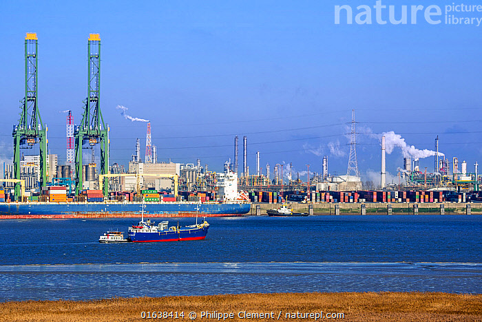 Harbour cranes and container ship docked in the Antwerp harbour / port, Flanders, Belgium. December 2018  ,  container ship,boat,boats,ship,containers,Belgium,Europe,port,harbour,harbor,Antwerp,industry,environment,environmental,industrial landscape,global warming,CO2,climate change,Belgian,EU,smoke,industrial emission,industrial emissions,water,river,Schelde,Scheldt,commerce,import,export,transport,transportation,quay,air pollution,polluting,smoking,chimneys,plant,petrochemical,oil refinery,industrialisation,industrial zone,industrial estate,petroleum,refinery,energy,power,carbon,dioxide,fossil,fuel,economy,chemical,Europe,European,,,Europe,Western Europe,Belgium,Harbour,Boat,Industrial Ship,Cargo Ship,Freighter,Container Ship,Container Ships,Freighters,Landscape,Working-boats,  ,  Philippe Clement
