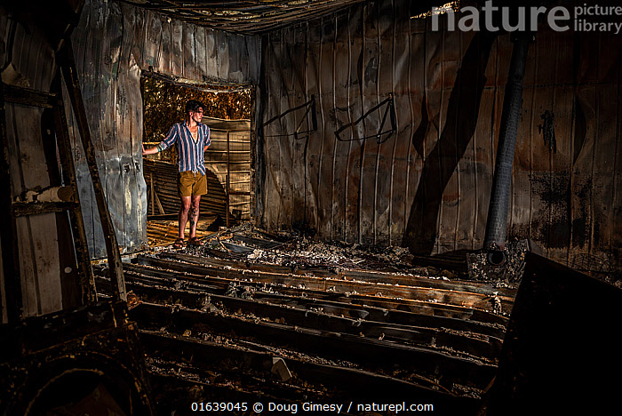 Jeremy Jenkins, seeing his house for the first time after the 2019 / 2020 wildfires destroyed much of the the town of Sarsfield,Victoria, Australia. January, 2020. Editorial use only, Homes,Sadness,Damaged,Burnt,Australasia,Australia,Victoria,Building,Residential Structure,House,Houses,Fire,Natural Disaster,Forest Fire,Forest Fires,Environment,Environmental Issues,Global Warming,Greenhouse Effect,Homes,Climate change,Wildfire,Wild fire,Wild fires,Bush Fire,, Doug Gimesy