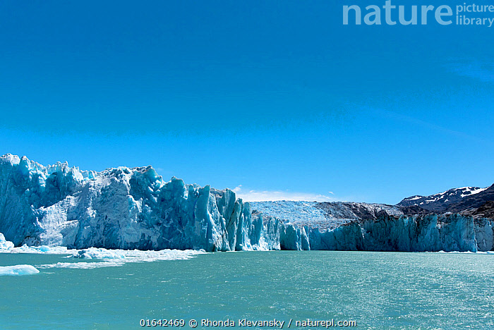O'Higgens glacier in Bernado O'Higgens National Park, in Patagonia, on the border of Chile and Argentina. January 2017.  ,  Colour,Blue,Latin America,South America,Chile,Mountain,Ice,Glacier,Environment,Environmental Issues,Global Warming,Greenhouse Effect,Freshwater,Lake,Water,Reserve,Climate change,Protected area,National Park,  ,  Rhonda Klevansky
