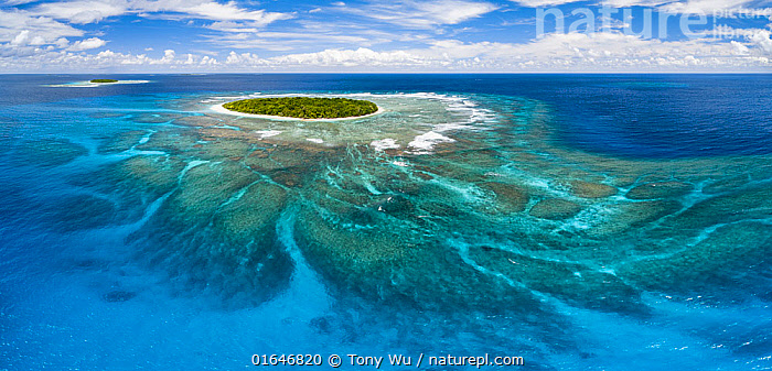 Aerial panorama of Fangasito Island with the underwater coral reef clearly visible, Vava'u island group, Kingdom of Tonga, South Pacific, with Fonua'one'one island visible in the background. September 2019.  ,  Oceania,Tonga,Kingdom of Tonga,Aerial View,High Angle View,Tropical,Horizon,Island,Islands,Reef,Reefs,Coral Reef,Coral Reefs,Ocean,Pacific Ocean,Landscape,Marine,Water,Saltwater,Elevated view,Vavau,Vava&#39,u,  ,  Tony Wu