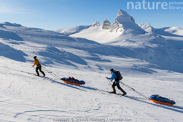 Orsolya Haarberg and Erlend Haarberg pulling sledges in the Jotunheimen mountains, with the Mt Store Smorstabbtinden in the background. Norway. April 2020.  ,  Orsolya Haarberg,Erlend Haarberg,Store Smorstabbtinden,Jotunheimen,Sledge,Outdoor life,Winter,Spring,Snow,,,Walking,People,Europe,Northern Europe,North Europe,Nordic Countries,Scandinavia,Norway,Land Vehicle,Animal Drawn,Sleigh,Mountain,Snow,Landscape,Spring,Sport,Sports,Trekking,Winter Sport,Winter Sports,Skiing,Moving,Movement,  ,  Orsolya Haarberg