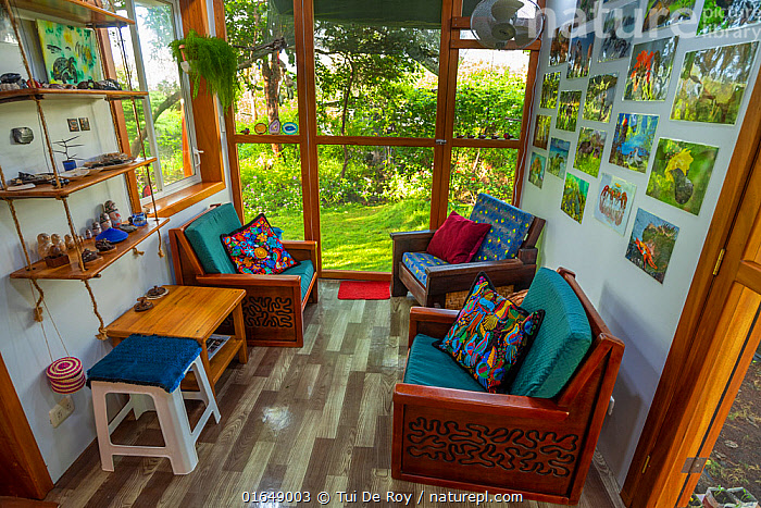 Plywood seats made with routered decorations in photographer Tui De Roy's home. Taken during Covid-19 lockdown. Santa Cruz Island, Galapagos Islands April 2020  ,  Latin America,South America,Galapagos,Furnishing,Furniture,Garden,Building,Residential Structure,House,Houses,Indoors,Galapagos National Park,  ,  Tui De Roy