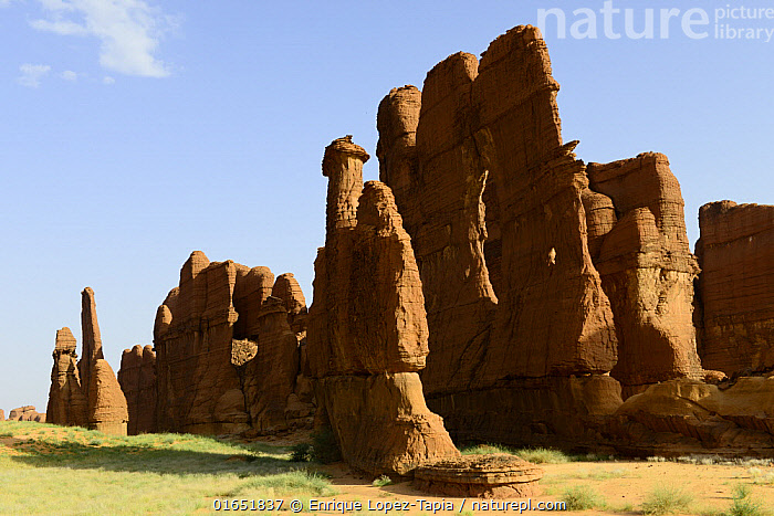 Eroded sandstone rock formations in the Ennedi Natural And Cultural Reserve, UNESCO World Heritage Site, Sahara Desert, Chad. September 2019.  ,  Africa,Central Africa,Chad,Rock Formations,Monolith,Pinnacles,The Pinnacles,Desert,Sahara Desert,Sahara,Rock,Sandstone,Landscape,Geology,Protected area,UNESCO World Heritage Site,Landform,  ,  Enrique Lopez-Tapia