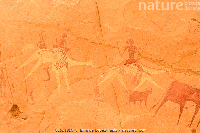 Ancient cave paintings. Ennedi Natural and Cultural Reserve, UNESCO World Heritage Site, Chad. September 2019.  ,  Africa,Central Africa,Chad,Art,Cave Painting,Cave Paintings,Cave,Desert,Sahara Desert,Sahara,Cave art,Rock art,Protected area,UNESCO World Heritage Site,  ,  Enrique Lopez-Tapia