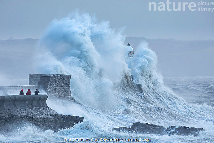 Porthcawl Lighthouse battered by Storm Ciara, man photographing storm from sea wall. Porthcawl, Mid Glamorgan, Wales, UK. February 2020.  ,  Capturing An Image,Photographing,Crashing,Danger,Group,Group Of People,Europe,Western Europe,UK,Great Britain,Wales,Photography,Building,Lighthouse,Lighthouses,Tide,Tides,High Tide,High Tides,Tide In,Ocean,Atlantic Ocean,Wave,Weather,Storm,Coast,Marine,Coastal,Water,Bad Weather,Saltwater,Bridgend,Heavy seas,Severe weather,Dramatic,Bristol Channel,  ,  Guy Edwardes