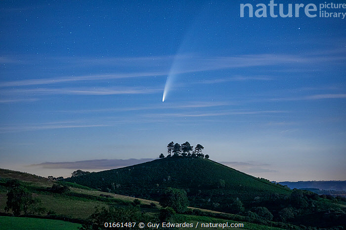 Comet C/2020 F3 Neowise over Colmer's Hill , Bridport, Dorset, UK. July 2020  ,  Natural Science,Astronomy,Europe,Western Europe,UK,Great Britain,England,Dorset,Outer Space,The Universe,Comet,Comets,Sky,Landscape,Night,  ,  Guy Edwardes