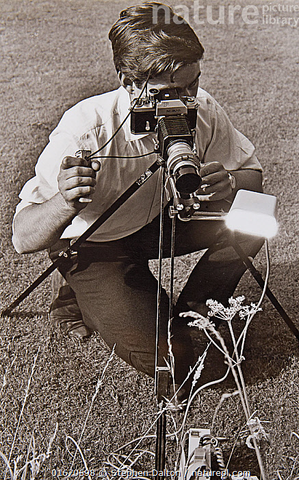 Stephen Dalton using flash to photograph insects in the field with Leitz Hektor lens equipped with home-made automatic diaphragm mounted on Nikon camera body, 1969.  ,  People,Photographer,Photographers,B/W,Monochromatic,High Speed,Equipment,Photographic Equipment,Camera,Bookplate,  ,  Stephen  Dalton