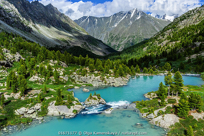 Darashkol, a high-mountain lake in the Altai mountains. Altai Mountains, Golden Mountains of Altai UNESCO World Heritage Site, Russia.  ,  Colour,Green,Russia,Mountain,Landscape,Beautiful,Freshwater,Lake,Water,Protected area,UNESCO World Heritage Site,Wilderness,Altai Mountains,  ,  Olga Kamenskaya