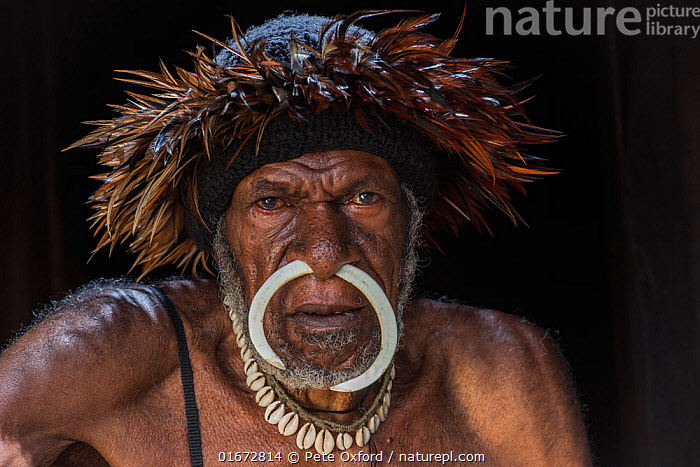 Dani tribe man, Budaya village, Suroba, Trikora Mountains, West Papua, Indonesia. October 2020.  ,  People,Man,Traditional,Oceania,Melanesia,New Guinea,Clothing,Headdress,Culture,Indigenous Culture,Indonesia,Tribes,Local people,Body modification,Piercing,  ,  Pete Oxford