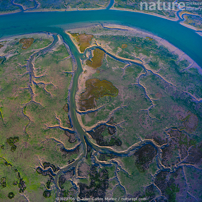 Aerial view of Oyambre Natural Park, San Vicente de la Barquera, Cantabrian Sea, Cantabria, Spain. February 2020.  ,  Pattern,Europe,Southern Europe,Spain,Aerial View,High Angle View,Flowing Water,River,Freshwater,Wetland,Water,Reserve,Protected area,Interesting,Elevated view,Natural Park,Drone,Drone shot,  ,  Juan Carlos Munoz