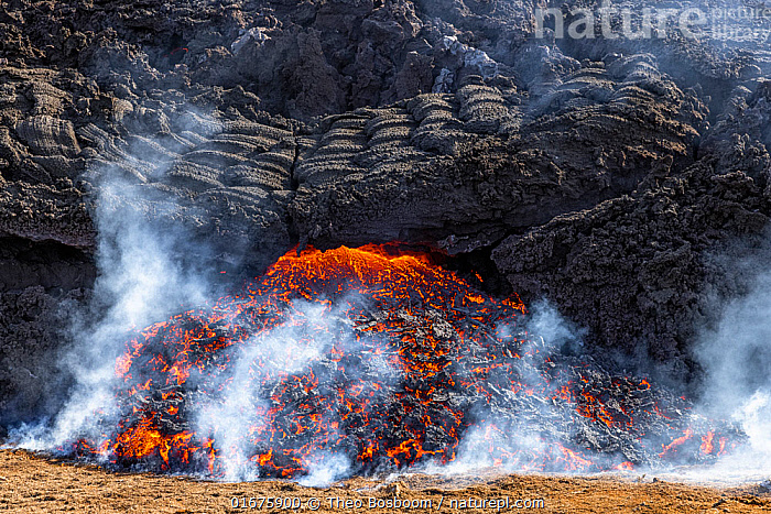 Edge of the lava field at the Fagradalsfjall volcano with a new flow of lava emerging from under the solidified lava. Fagradalsfjall, Iceland. 5 April 2021.  ,  Erupting,Colour,Orange,Europe,Northern Europe,North Europe,Nordic Countries,Scandinavia,Iceland,Volcano,Lava,Geology,Volcanic features,Lava flow,  ,  Theo  Bosboom