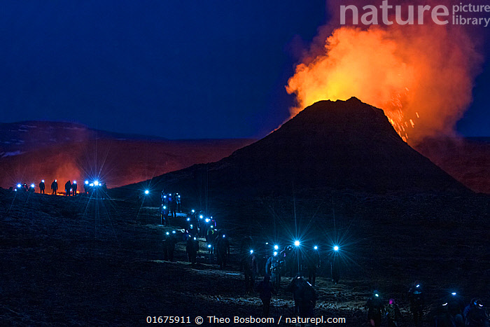 Long line of walking people with headlights, heading back at night from visiting Fagradalsfjall volcano on Iceland, photographed around half an hour after sunset. The eruption draws large numbers of visitors, mostly domestic tourists due to coronavirus pandemic. 2 April 2021.  ,  Erupting,People,Tourist,Tourists,Colour,Orange,Group,Large Group,Europe,Northern Europe,North Europe,Nordic Countries,Scandinavia,Iceland,Artifical light,Electric Light,Volcano,Night,Travel,Tourism,Geology,Volcanic features,Head torch,  ,  Theo  Bosboom