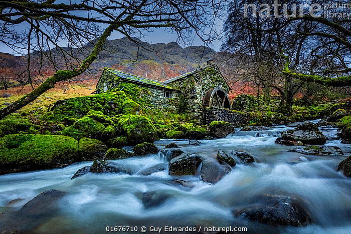 Disused water mill, Borrowdale, Lake District National Park, Cumbria, England, UK. December 2020  ,  Abandoned,Europe,Western Europe,UK,Great Britain,England,Cumbria,Photographic Effect,Long Exposure,Plant,Mosses,Moss,Infrastructure,Energy Infrastructure,Energy Infrastructures,Watermill,Watermills,History,Lake district,The Past,  ,  Guy Edwardes