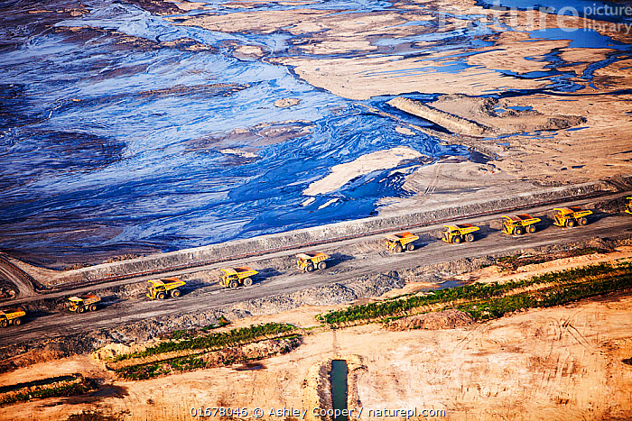 Massive dump trucks queuing to load with tar sand in front of a toxic wasteland. Syncrude mine, Athabasca, Alberta, Canada, 2012  ,  COP26,tar sand,tar sands,oil sand,oil sands,contamination,contaminated,strip mining,Fort Murray,destruction,carbon footprint,Boreal Forest,bitumen,deposits,oil reserves,emissions,carbon footprint,,oil slick,,,Pollution,North America,Canada,Alberta,Aerial View,High Angle View,Land Vehicle,Motor Vehicle,Truck,Lorries,Lorry,Trucks,Fossil Fuel,Oil,Petroleum Fuel,Petroleum Fuels,Environment,Environmental Issues,Global Warming,Greenhouse Effect,Environmental Damage,Power supply,Energy,Climate change,Elevated view,  ,  Ashley Cooper