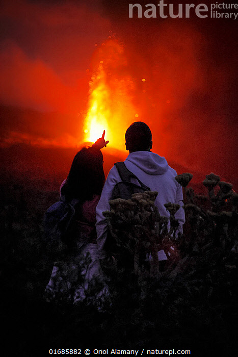 Cumbre Vieja volcano erupting at night, with a couple watching, La Palma, Canary Islands, September 2021.  ,  Pointing,Erupting,People,Woman,Man,Couple,Spectacular,Temperature,Hot,Europe,Southern Europe,Island,Islands,Volcano,Lava,Night,Geology,Volcanic features,Atlantic Islands,Mediterranean Basin,Mediterranean,Biodiversity hotspot,Phenomenon,Natural Phenomenon,  ,  Oriol  Alamany