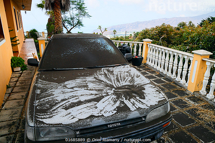Car covered with volcanic ash during the eruption of Cumbre Vieja volcano, La Palma, Canary Islands, September 2021.  ,  Felis catus,Erupting,Europe,Southern Europe,Animal,Building,Residential Structure,House,Houses,Land Vehicle,Motor Vehicle,Ash,Ashes,Island,Islands,Volcano,Domestic animal,Pet,Geology,Volcanic features,Atlantic Islands,Mediterranean Basin,Mediterranean,Biodiversity hotspot,Domestic Cat,Domesticated,Phenomenon,Felis catus,Cat,Volcanic Ash,Natural Phenomenon,Car,Automobile,  ,  Oriol  Alamany