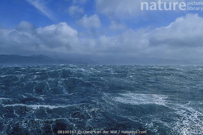 A 70 knot storm off Cape Horn, Chile. ^^^This area has a well-earned reputation for its mountainous seas and constant gales, caused by the build up of uninterrupted depressions circulating the Southern Ocean that are then squeezed through the narrow gap, known as the Drake Passage, that divides South America from Antarctica., ATMOSPHERIC,COASTS,HEAVY-SEAS,LANDSCAPES,OCEAN,SOUTH-AMERICA,STORMS,WEATHER,WIND,WAVES, WEATHER, Onne van der Wal
