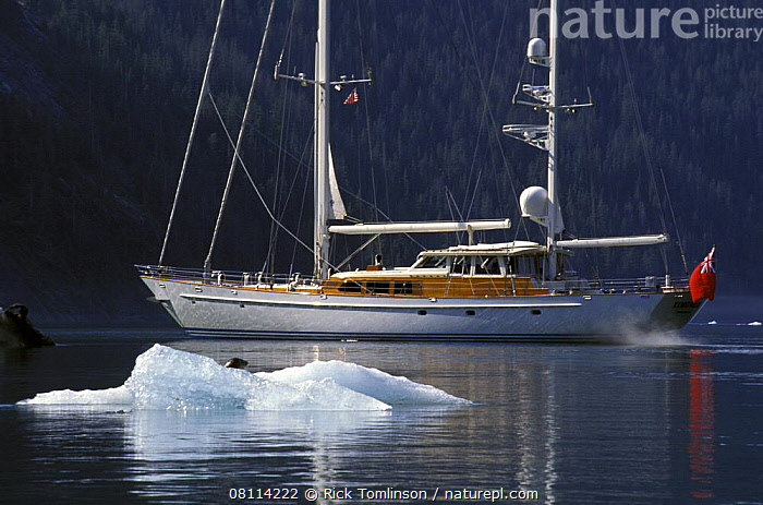 """118ft S&S designed superyacht, """"Timoneer"""" passes by a lazing seal on an iceberg in Fords Terror, Tongass National Forest, south-east Alaska.  ,  ALASKA,COASTS,CRUISING,FJORD,FJORDS,FORESTS,ICE,ICEBERGS,KETCHES,LARGE,MAMMALS,MARINE,PINNIPEDS,RESERVE,SAILING BOATS,SEALS,SUPERYACHTS,USA,YACHTS,BOATS, SAILING-BOATS , CARNIVORES ,North America, SAILING-BOATS , CARNIVORES ,SIZE  ,  Rick Tomlinson"""