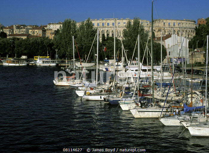Boats moored in the marina with amphitheatre in the background, Pula, Slovenia  ,  BALKANS,BUILDINGS,COASTS,EUROPE,HARBOURS,HISTORICAL,MARINAS,MEDITERRANEAN,MOORED,SAILING BOATS,SLOVENIA,YACHTS,BOATS  ,  James Boyd