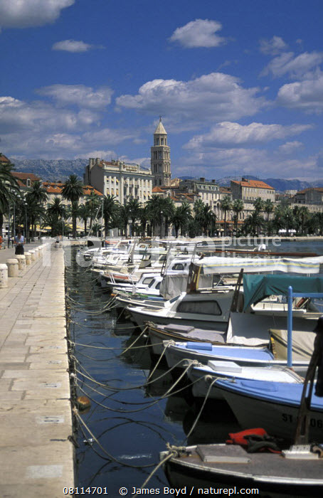 Boats moored in a line along the quayside with the old town and Diocletian's palace in the background. Split, Croatia.  ,  VERTICAL,BOATS,BOWS,BUILDINGS,CROATIA,EUROPE,HARBOURS,LANDSCAPES,MEDITERRANEAN,MOORED,MOTORBOATS,TEMPERATE,TOWNS  ,  James Boyd