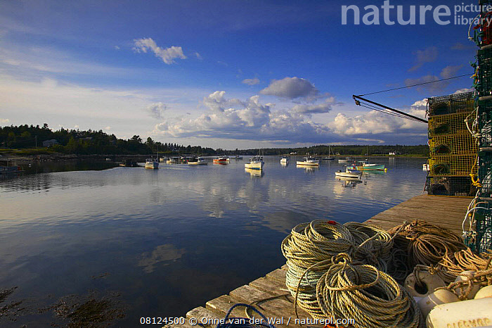 Nature Picture Library - Fishing crates and ropes stacked on