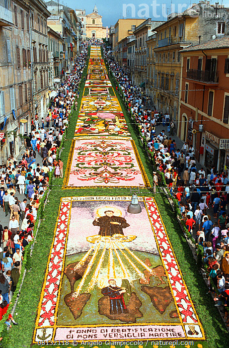 Carpets of flowers during Infiorata in June, on the Via Italo Belardi in Rome's Genzano district.  ,  VERTICAL,BUILDINGS,EUROPE,EVENTS,FESTIVALS,FLOWERS,ITALY,MEDITERRANEAN,PEOPLE,RELIGION,RELIGIOUS,ROADS,SPECTATORS,TOWNS,TRADITIONAL  ,  Angelo Giampiccolo