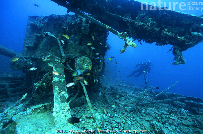 """Diver exploring the stern deck area on the wreck of the SS """"Thistlegorm"""", located in the Straits of Gubal, Northern Red Sea. ^^^She was sunk by German bomber planes in World War II and has lain at the bottom of the sea for over sixty years.  ,  AFRICA,ATMOSPHERIC,BOATS,DEBRIS,DIVING,HISTORICAL,MERCHANT NAVY,NORTH AFRICA,PEOPLE,RED SEA,TROPICAL,UNDERWATER,WRECKS,Marine  ,  Angelo Giampiccolo"""
