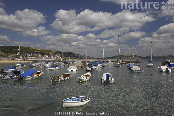 Nature Picture Library - Boats moored in the small harbour at Lyme