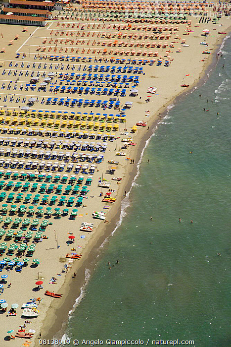 Nature Picture Library Rows Of Colourful Umbrellas And