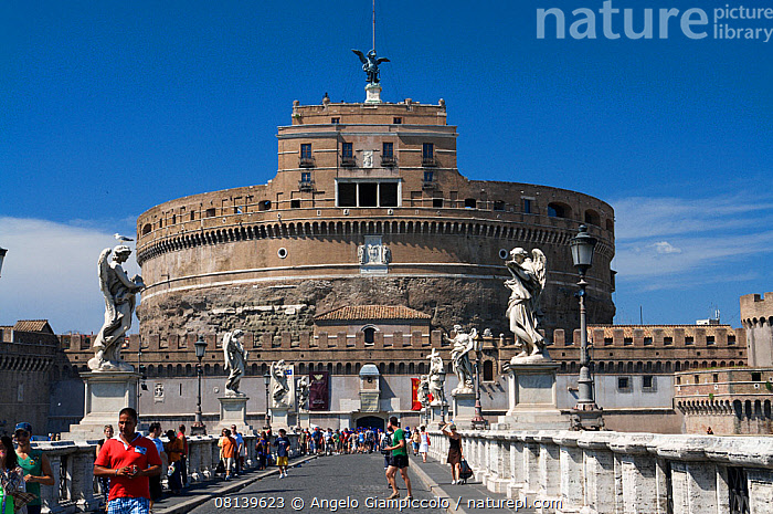 Nature Picture Library View Of The Castel Sant Angelo From