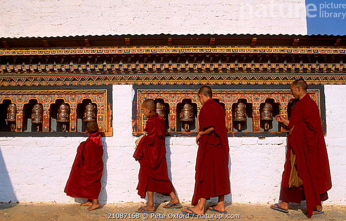 Monks turning prayer wheel Dzongchung temple Punakha Dzong Central Bhutan  ,  TRADITIONAL,PEOPLE,RELIGIOUS,BUILDINGS,BUDDHISM,MONK,FOUR,INDIAN-SUBCONTINENT,Asia  ,  Pete Oxford