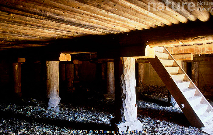 Ground floor in Tibetan house Yunnan, China  ,  BUILDINGS,INDOORS,TRADITIONAL,LANDSCAPES,WOOD,STAIRCASE,TRIBES,Asia,CHINA  ,  Xi Zhinong