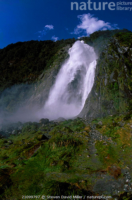 Bowen Falls from Cemetery Point Milford Sound Fiordland NP South Island New Zealand, PARK,NEW ZEALAND,LANDSCAPES,RESERVE,WATERFALLS,NATIONAL,AUSTRALASIA, Steven David Miller