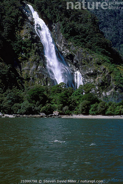 Bowen Falls from Cemetery Point Milford Sound Fiordland NP South Island New Zealand, NATIONAL,RESERVE,WATERFALLS,NEW ZEALAND,LANDSCAPES,SPRAY,PARK, Steven David Miller