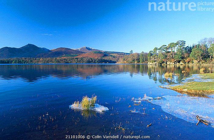 Shoreline of Derwent Water in winter with ice on edge Lake District NP Cumbria UK, LAKES,LANDSCAPES,WETLANDS,RESERVE,NATIONAL,PEACEFUL,EUROPE,PARK,CONCEPTS,ENGLAND, Colin Varndell