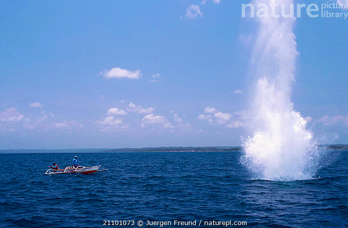 Fishermen dynamiting fish on coral reef. Philippines 2000, SEA,EXPLOSIVE,PEOPLE,BOATS,DYNAMITE,REEFS,FISHERIES,INDO PACIFIC,PACIFIC OCEAN,CORAL REEFS,EXPLOSION,INDIAN OCEAN,TRADITIONAL,MARINE,SOUTH-EAST-ASIA,Asia, Jurgen Freund